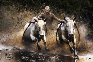 De winnaars van de Sony World Photography Awards 2011